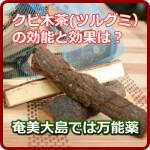 クビ木茶(ツルグミ)の効能と効果は?内と外に効く奄美大島の万能薬!